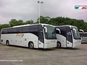 Autobuses Mayab